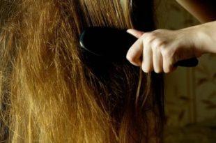بالصور حل تشابك الشعر بالصور من تجارب البنات كيفية تمشيط الشعر المتشابك 310x205