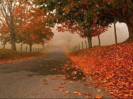 صوره موضوع تعبير عن فصل الخريف