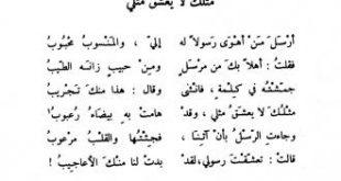 شعر ابو نواس الغزل الفاحش