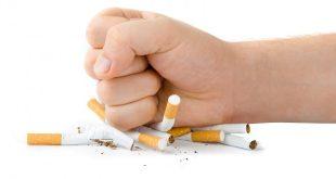 صور مقال اجتماعي عن التدخين قصير