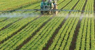 موضوع عن الزراعة