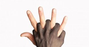 صور مواضيع عن العنصرية