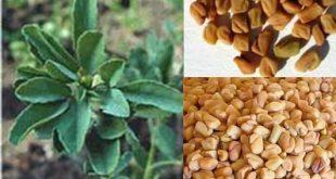 النباتات التي تسبب اسهال