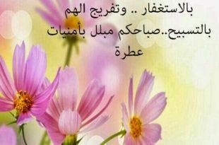 بالصور كلمات صباحية معبرة , صباح الخير 15235d7db8a0f23c462e349b97199ffb 310x205