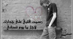 صورة شعر لاتندم على حب عشته