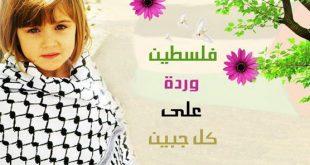 اشعار عن فلسطين