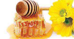 ما هي فوائد شهد العسل