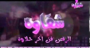 صورة تردد قناة شقاوة