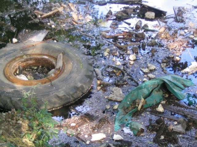 صور موضوع تعبير عن البيئة