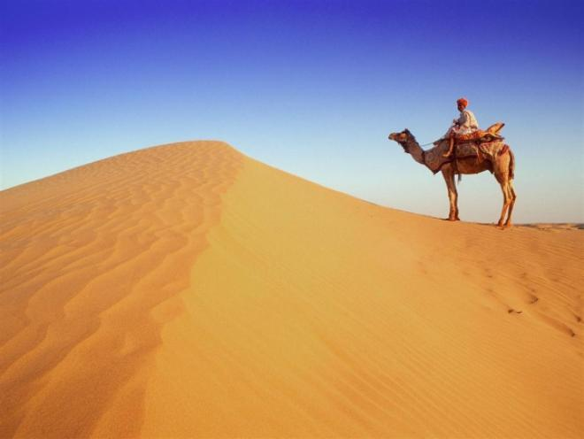 صورة موضوع تعبير عن تعمير الصحراء