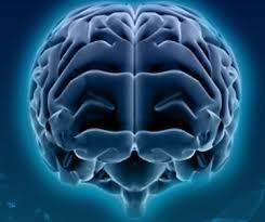 صورة كيفية السيطرة على عقول الاخرين