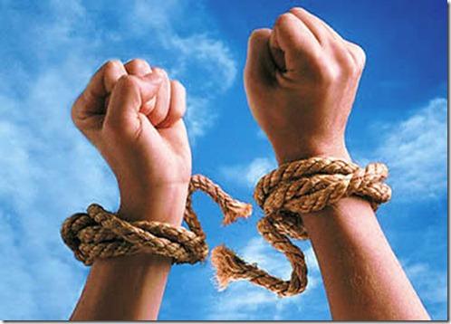 صور موضوع الحرية