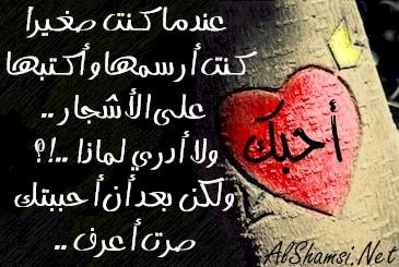 صورة كلام حب جميل