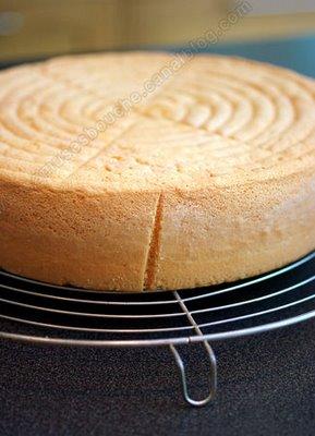 صورة طريقة عمل الكيكة الاسفنجية بالصور , تحضير الكيك 20160717 6
