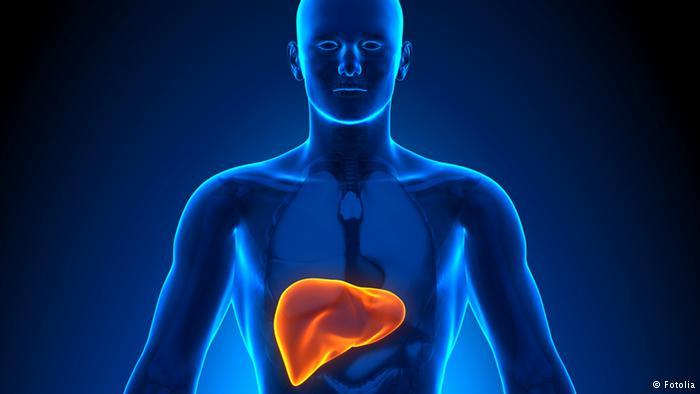صورة مرض تليف المعدة , تعرف اسباب مرض تليف المعدة