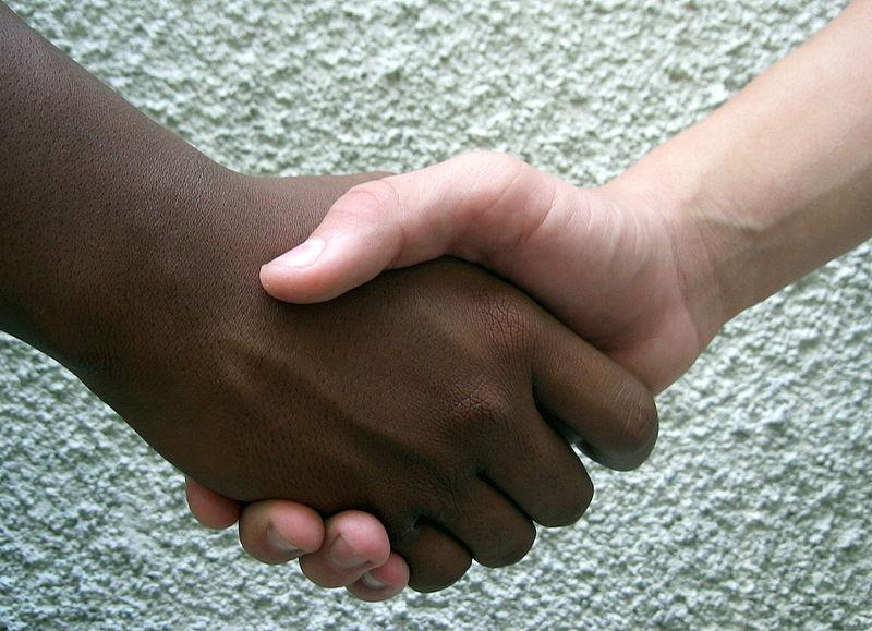 صوره ما هى العنصرية
