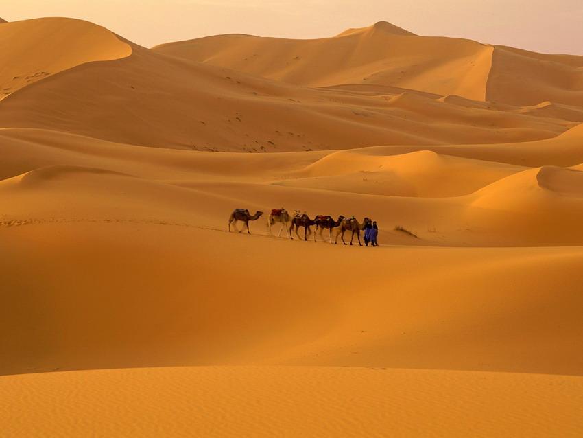 صورة تحضير نص اثار الصحراء