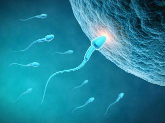 صورة علاج تاخر الحمل بعد الاجهاض بالاعشاب