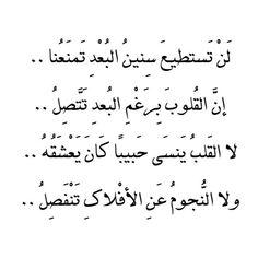 صوره قصائد احمد شوقي في الحب