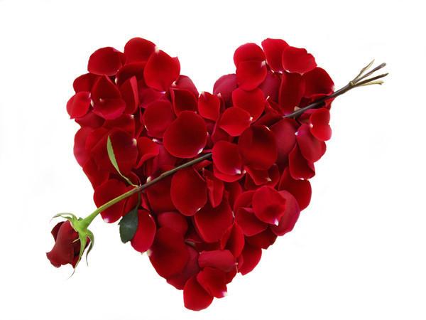 صورة كلمات حب اجمل كلام في الحب يقال للحبيب