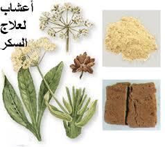 صورة اعشاب لتظبيط السكر
