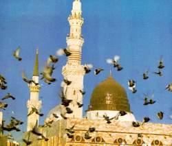 صور مقال عن الرسول صلى الله عليه وسلم