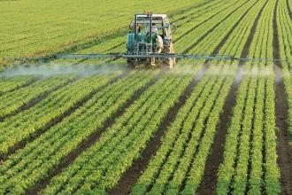 صور الانتاج الزراعي