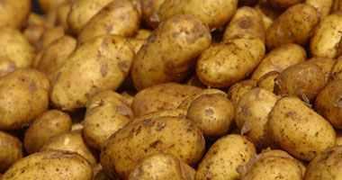 صور كيف تتخلصي من اضرار البطاطس المقلية