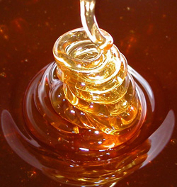 صورة مقال علمي عن العسل