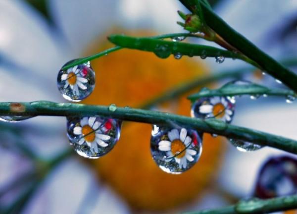 صوره خلفيات قطرات االمطر رائعه