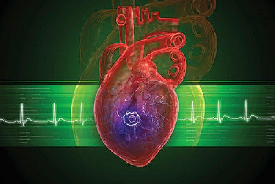 صور بعد الاكل اختلاف نظم القلب