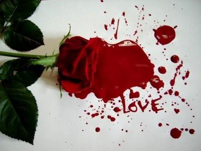 صورة الفرق بين الحب والعشق
