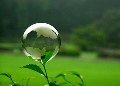 صورة ما هى البيئة