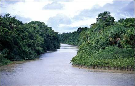 صورة ما هو اكبر نهر في العالم