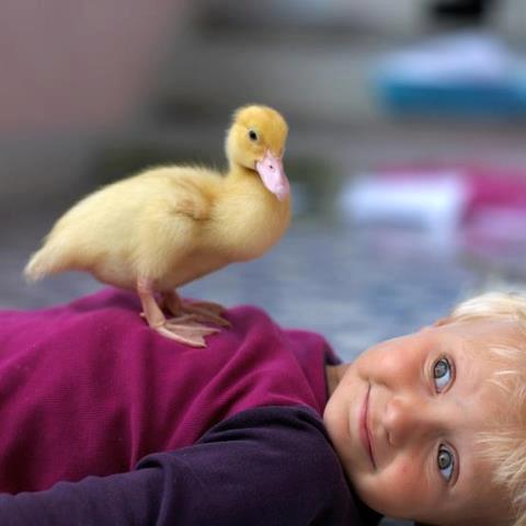 صور كلام جميل جدا عن الاطفال
