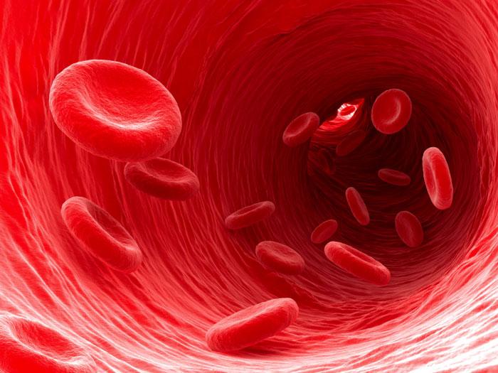 صور هل الدم يزيد في الوزن