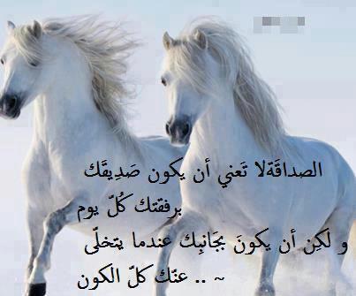 صورة شعر خليجي عن الصديق الوفي