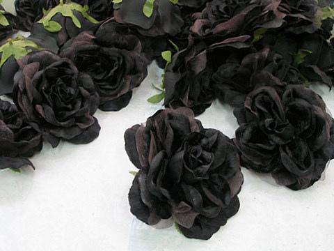صورة صور غريبه للزهور السوداء