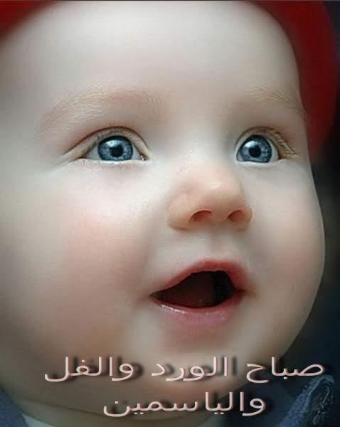 صورة صور صباح الفل صباحك فل يافل