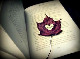 جمل الحكم فِيِ الحب