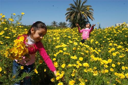 صور موضوع تعبير عن الربيع
