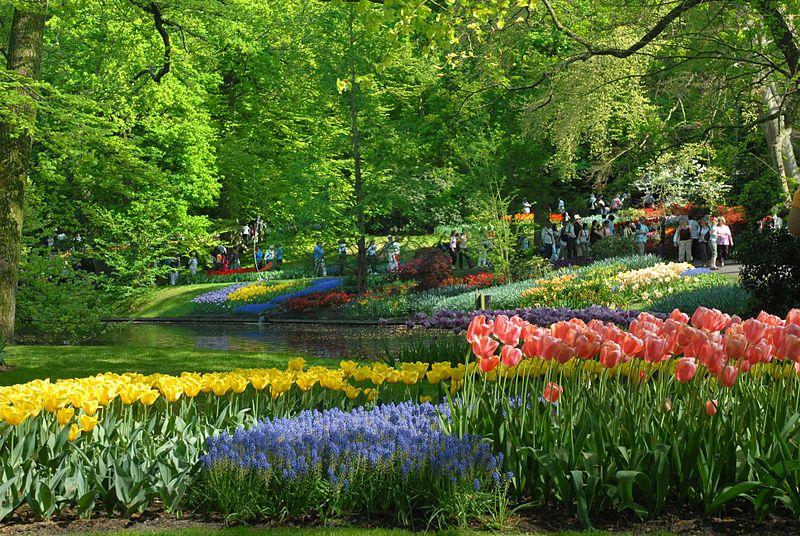 صورة موضوع فصل الربيع