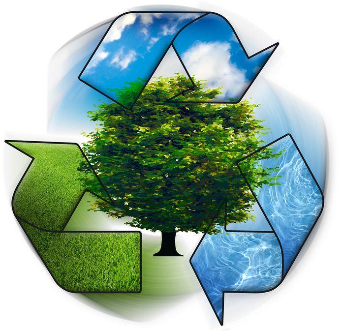 صورة موضوع على البيئة