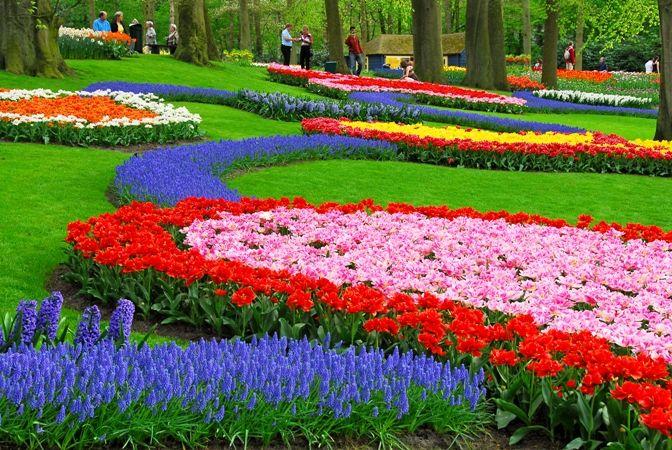 صورة موضوع عن عيد الربيع