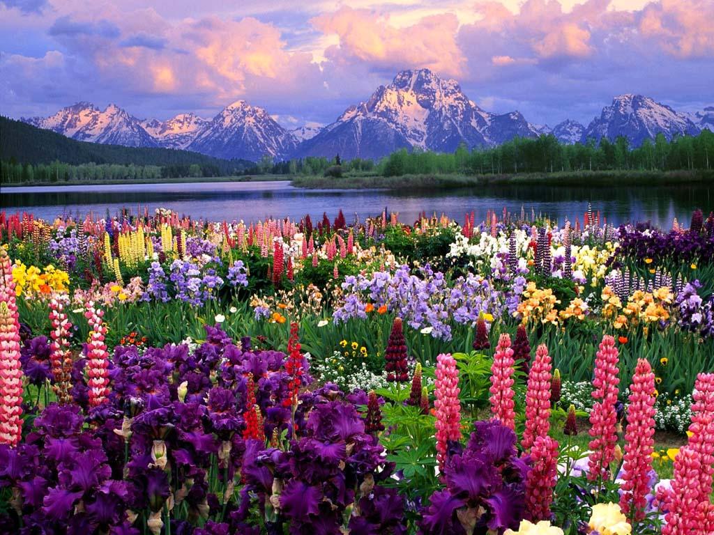 صورة اجمل مناظر طبيعيه حول العالم