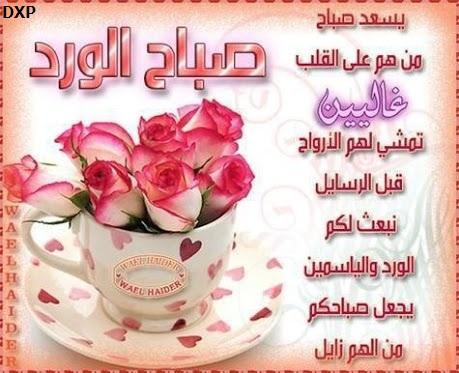 صور كلمات للصباح الراقى الجميل