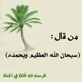 ادعية مصورة ، ادعية دينية مصورة ، ادعية اسلامية مستجابة مكتوبة بالصور