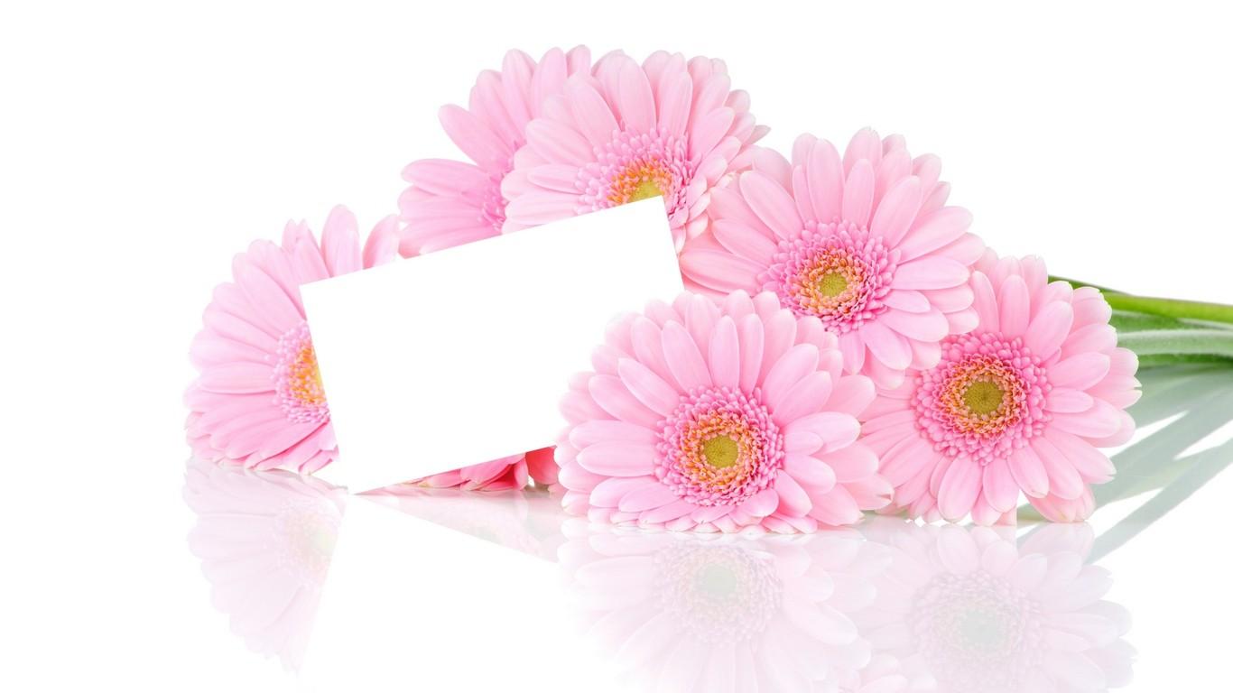 صورة بطاقات تهنئة بالنجاح , بطاقات تهنئة جاهزة للكتابة عليها