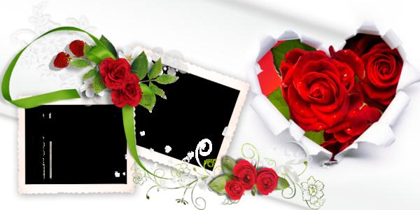 images/img_12/0fca81ef29b7670522781b0856db1b99.png