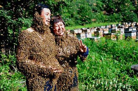 صورة كتاب النحل ابو فراس